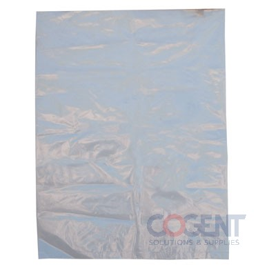 Poly Bag 20x30 2mil Clear 500/cs